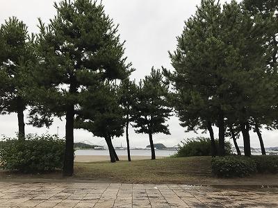 第1回横浜(YOKOHAMA)ビーチサイドマラソン海の公園