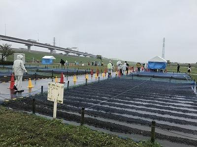 葛飾ふ~てんマラソンのハーフマラソンゴール写真