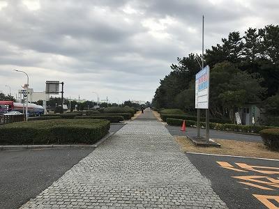第1回谷川真理クリスマスマラソン稲毛海浜公園