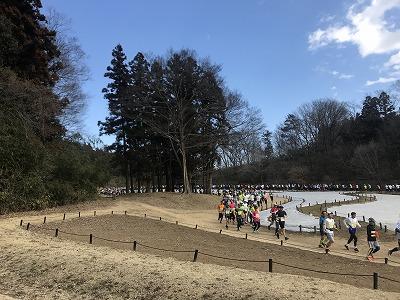 第43回森林公園完走マラソンハーフスタート直後