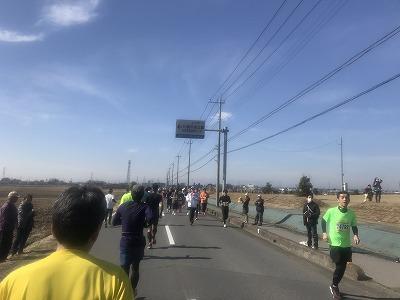 第36回鴻巣パンジーマラソンレース中写真