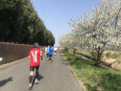 陸王杯第34回行田市鉄剣マラソン・ハーフマラソン29分後