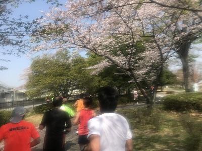陸王杯第34回行田市鉄剣マラソン・ハーフマラソン63分後