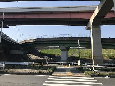第6回あだち五色桜マラソン荒川河川敷