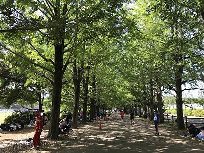 第19回 関東マスターズロード選手権スタート地点