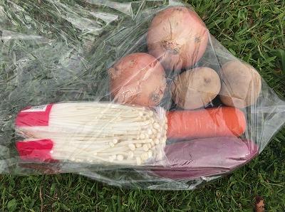 ベジタブルマラソンin彩湖参加賞の野菜