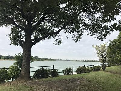 ベジタブルマラソンin彩湖風景