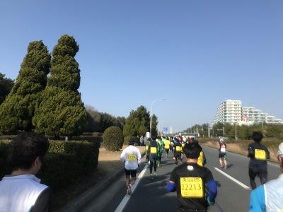 第42回サンスポ千葉マリンマラソン13キロ地点